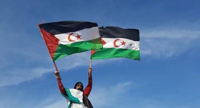 ⭕ Presos Políticos Saharauis en régimen de aislamiento desde hace 4 años. Amnistía Internacional cuestiona al gobierno marroquí por el caso de Lamin Haddi.