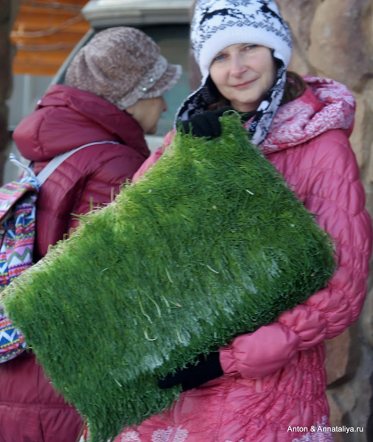 Зачем коренные американцы переехали в Россию на ПМЖ и поселились в Куркино?