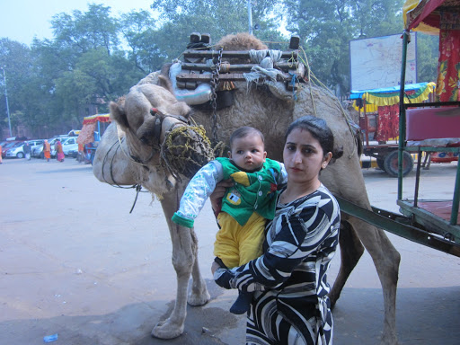 Camel wants to kiss Atharv