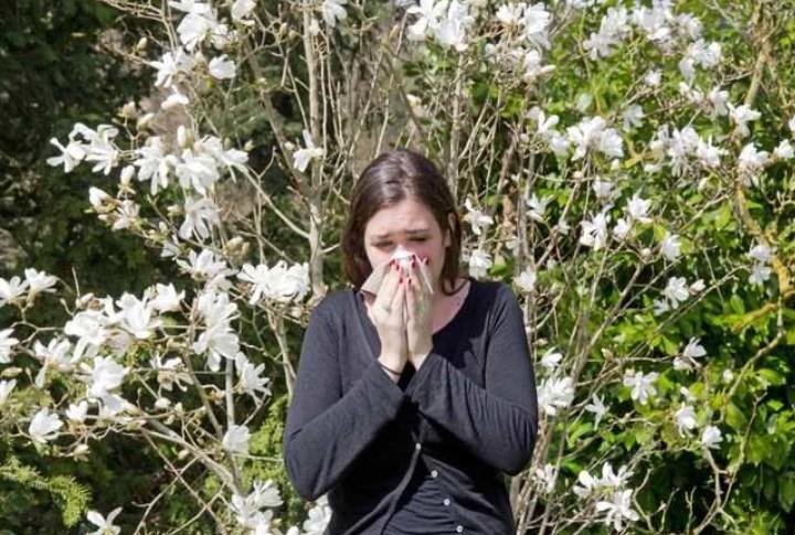 Mengenal Penyakit Rhinitis Alergi