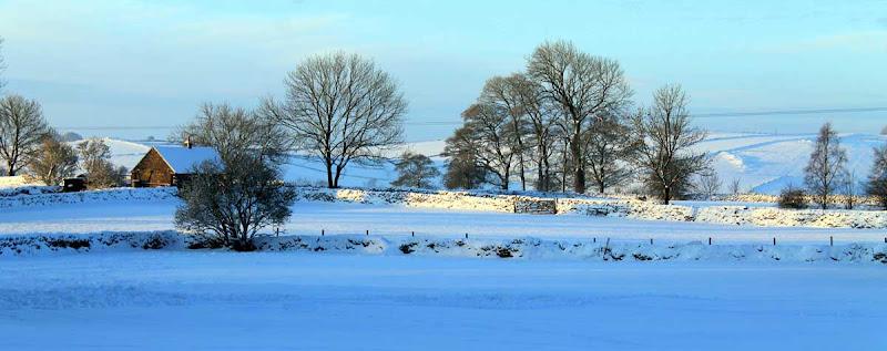 Winter-2013-a