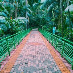 Canal do Motora