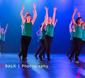 Han Balk Voorster Dansdag 2016-4622.jpg