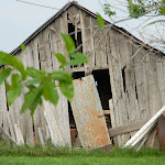 LindaMcFarlane-The old new barn.jpg