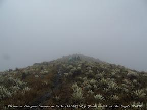 Páramo de Chingaza, Lagunas de Siecha (24/07/16) (cc)Fundación Humedales Bogotá ©VATF