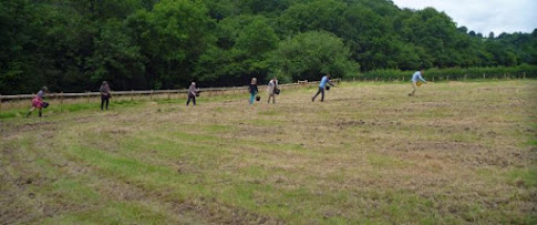 Work starts on Coronation Meadow