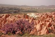 Красная Долина