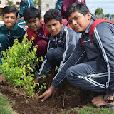 Gurukul Green Revolution (26).jpg