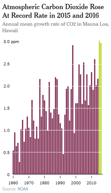 Annual mean growth rate of atmospheric carbon dioxide in Mauna Loa, Hawaii. Atmospheric CO2 rose at a record rate in 2015 and 2016. Source: NOAA. Graphic: The New York Times