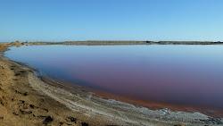 Saliaire Walvis bay