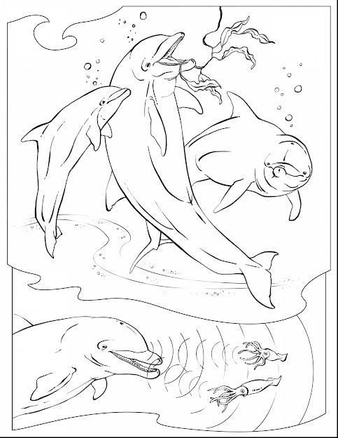 Astounding Dolphin Coloring Pages Adult With Underwater Coloring Pages