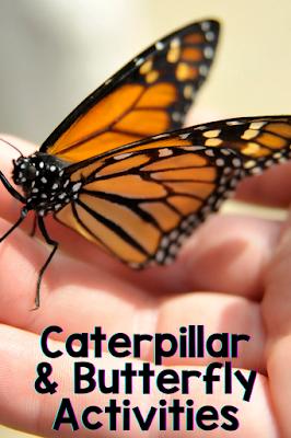 Butterfly resources and activities for kindergarten