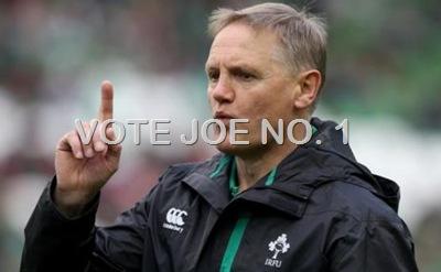 vote joe