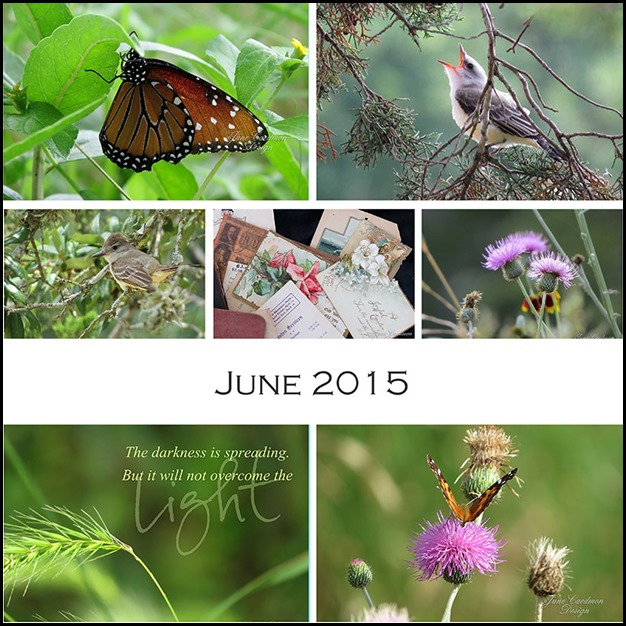 JUNE_Collage