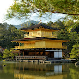 2014 Japan - Dag 8 - janita-SAM_6465.jpg