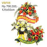 VSF05.jpg
