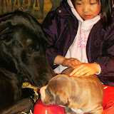 Star & True Blues February 21, 2008 Litter - HPIM1024.JPG
