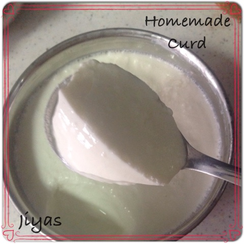 how to make set curd at home