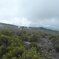 Horombo huts (3720 m)