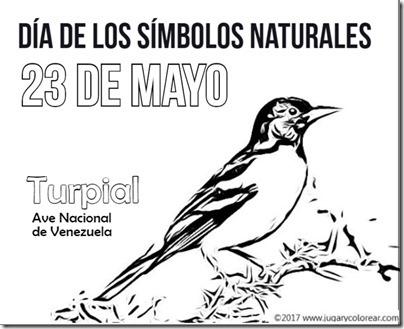 23 mayo venezuela  turpial
