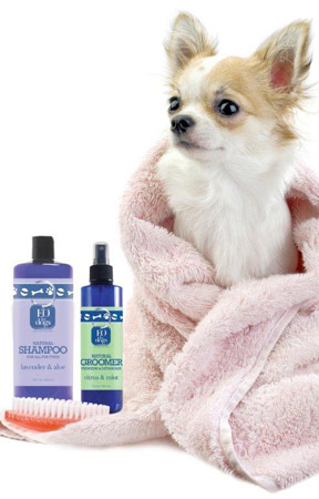 Is Your Dog the Next Face of EO Products