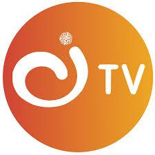 Logo Canal Institucional