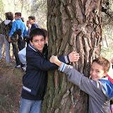 I piccoli guardiani del bosco
