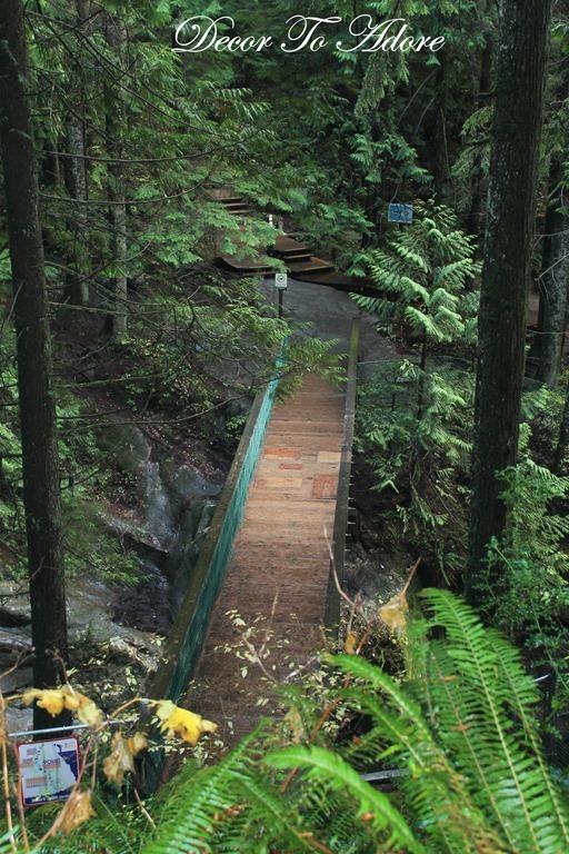 Whistler Lynn Canyon Stanley Park 174