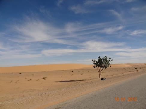 Marrocos e Mauritãnia a Queimar Pneu e Gasolina - Página 7 DSC06064