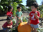 LePort Montessori Preschool Toddler Program Irvine Spectrum - kids on the farm