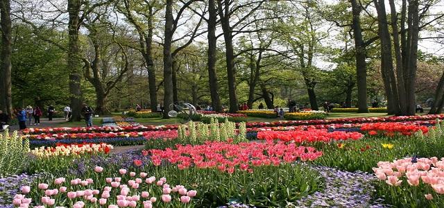 Vườn Hoa Keukenhof DA Lavila