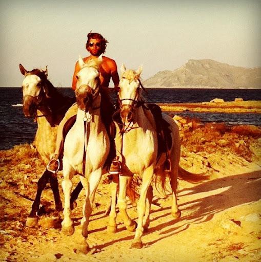 caballos en Mallorca