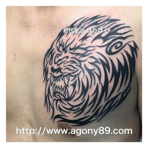 タトゥー、ライオン、トライバル タトゥーデザイン 画像、tribal tattoo、lion tattoo、タイガー、ライオン タトゥー画像、刺青、刺青画像、刺青デザイン、刺青デザイン画像、タトゥーデザイン、タトゥーデザイン画像、tattoo画像、タトゥーデザイン 千葉 タトゥースタジオ 千葉県 柏 タトゥースタジオ 画像.タトゥースタジオ アゴニー アンド エクスタシー 画像、初代彫迫、ブログ、ほりはく日記、刺青 ほりはく、http://horihaku.blogspot.com/