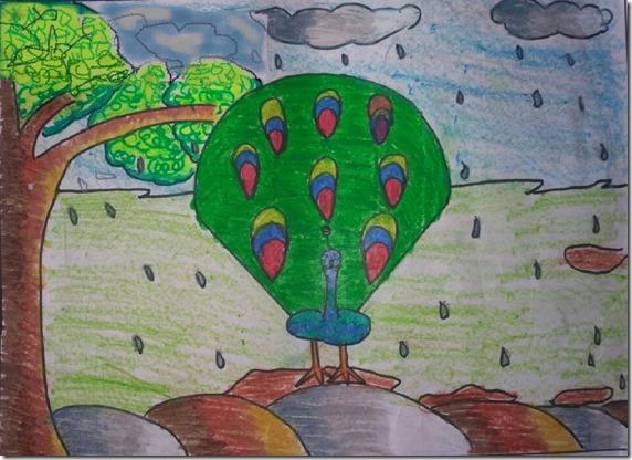 Abha A Mane III B Peacock raindancing