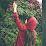 Amna Khan's profile photo