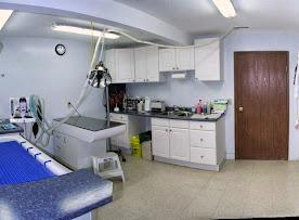 4_Dental.jpg