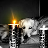 Romantycznie, przy świecach (18.01.2009r.)