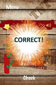 WordTNT Correct