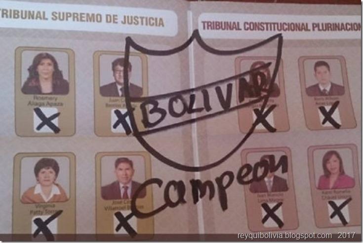 Judiciales 2017