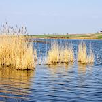 20140404_Fishing_Prylbychi_Stas_010.jpg
