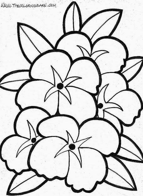 Coloring Pages Flowers With Coloring Pages Flowers Butterflies