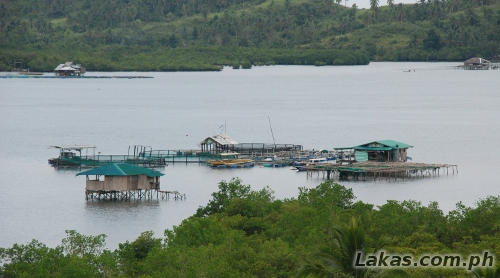 Fishpens at San Juanico Strait