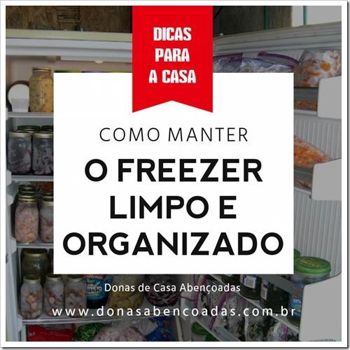 freezer-oganizado