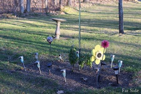 Garden November 13