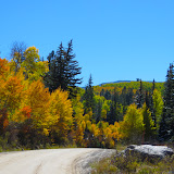 Vail Valley Fall Colors '13
