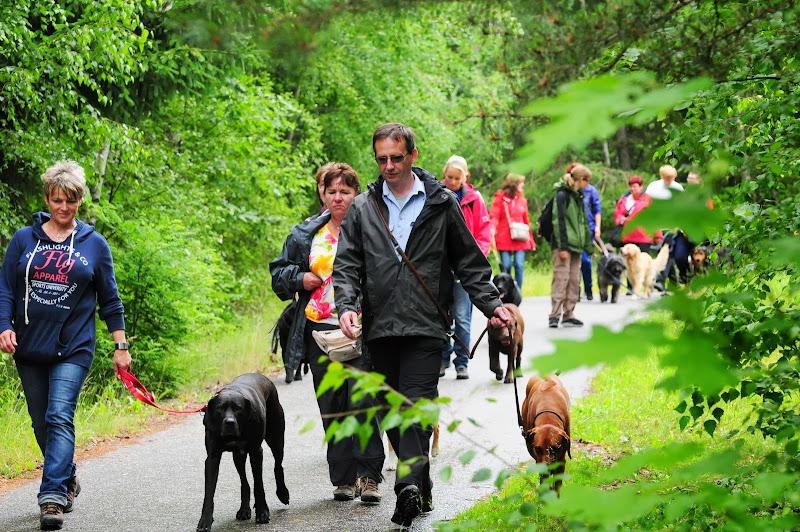 20130623 Erlebnisgruppe in Steinberger See (von Uwe Look) - DSC_3688.JPG