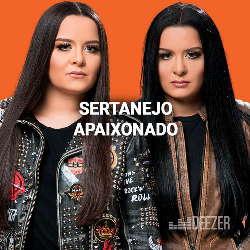 CD Sertanejo Apaixonado - Vários Artistas 2019 (Torrent)