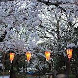 2014 Japan - Dag 1 - marjolein-IMG_0179-0107.JPG
