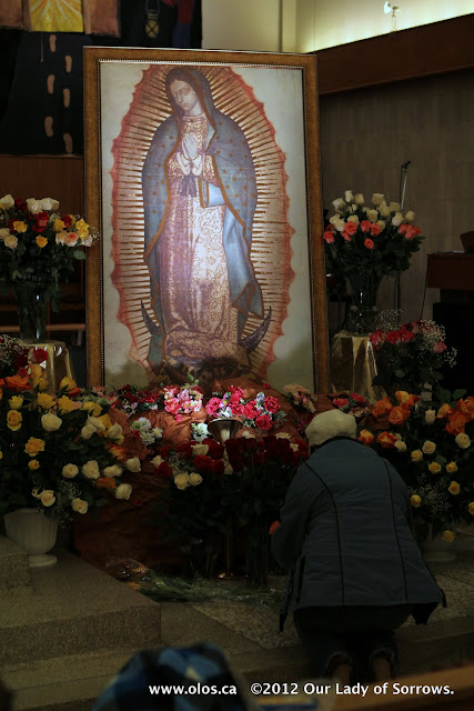 La Virgen de Guadalupe 2011 - IMG_7390.JPG