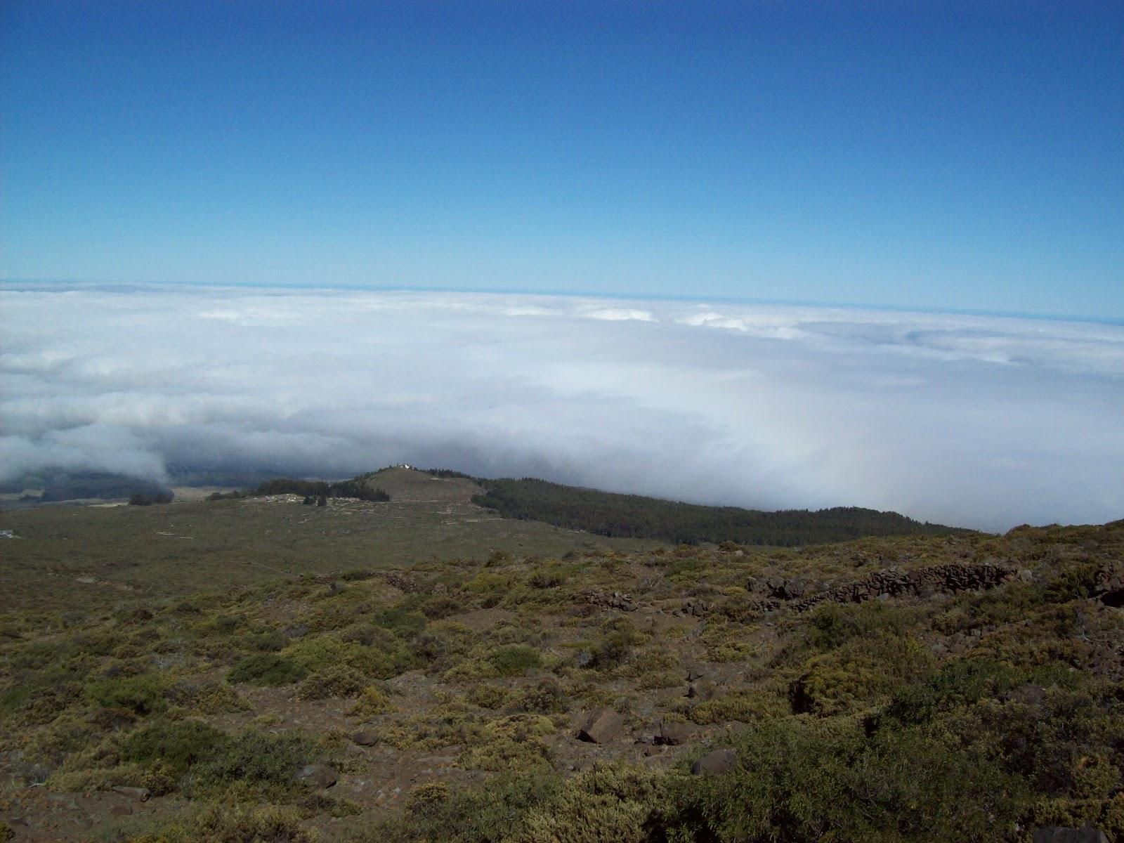 Hawaii Day 8 - 100_8083.JPG